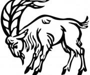 Coloriage Chèvre avec grosse cornes