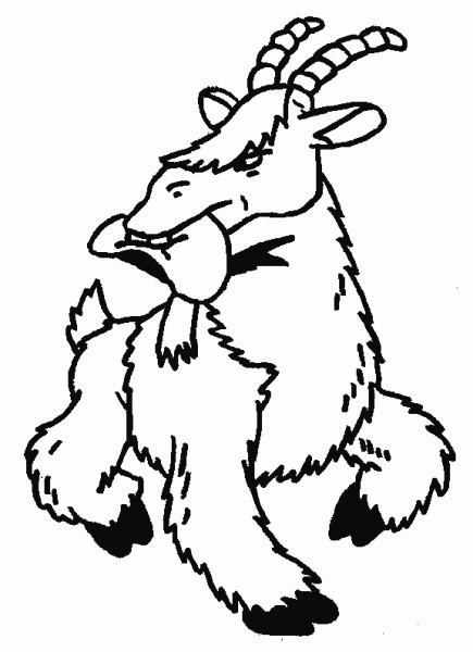 Coloriage et dessins gratuits Chèvre avec un chapeau à imprimer