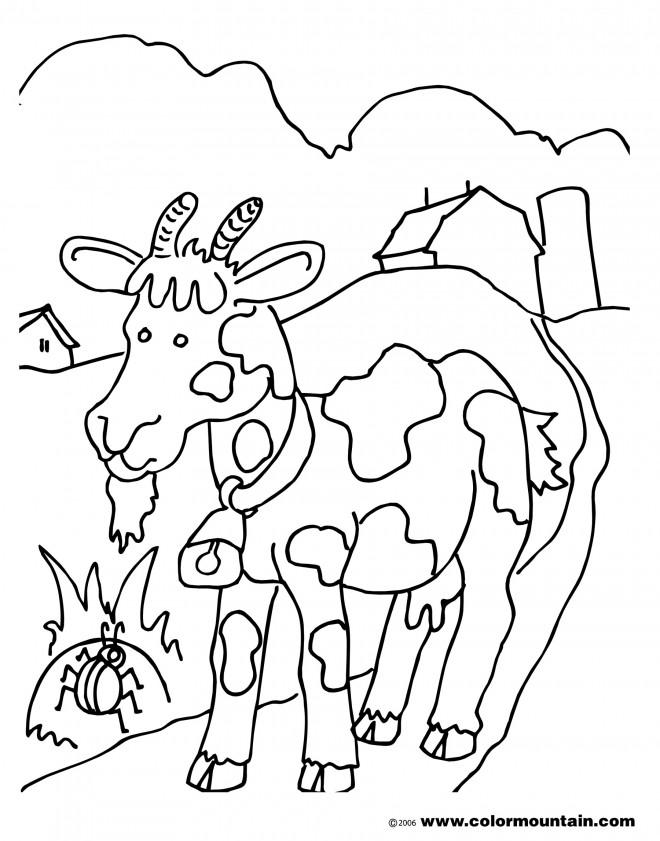 Coloriage et dessins gratuits Chèvre cherche à manger à imprimer