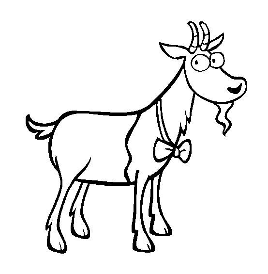 Coloriage et dessins gratuits Chèvre en portant un Nœud à imprimer