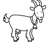 Coloriage Chèvre en souriant