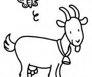 Coloriage et dessins gratuit Chèvre et papillon à imprimer