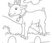Coloriage Chèvre heureuse portant une clochette