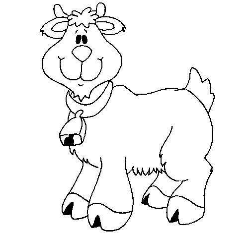 Coloriage et dessins gratuits Chèvre mignonne à imprimer