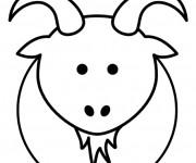 Coloriage Chèvre vue de face