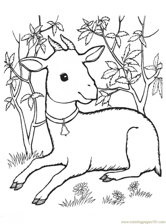 Coloriage et dessins gratuits Chevreau en se reposant à imprimer