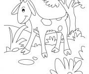 Coloriage chevreau s 39 amuse dans la for t dessin gratuit - Dessin chevreau ...