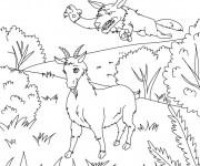 Coloriage La Chèvre et le loup