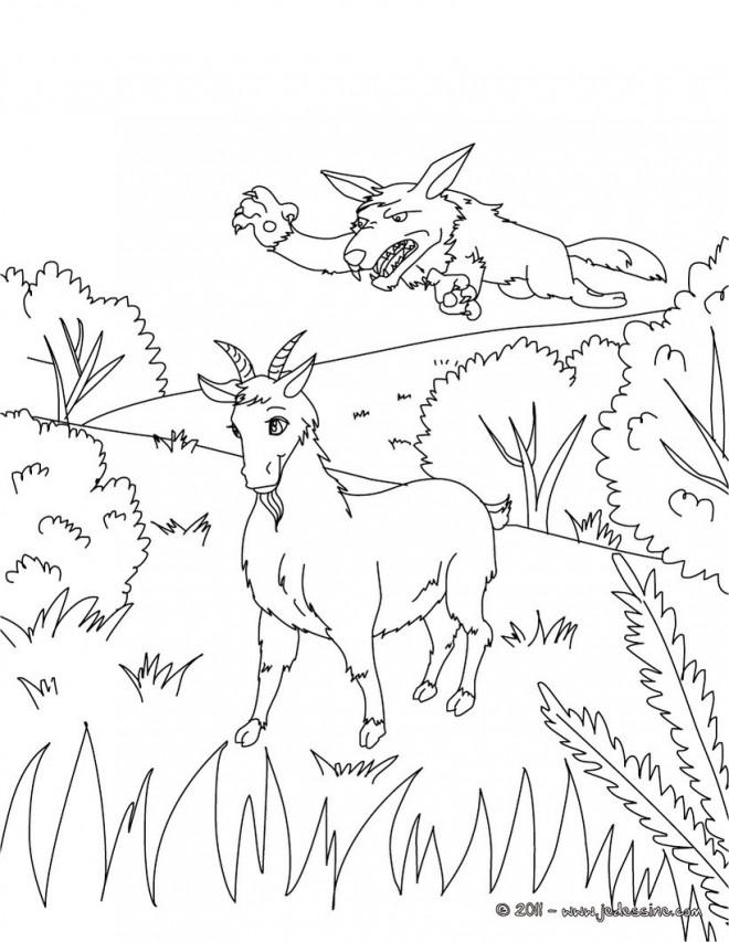 Coloriage et dessins gratuits La Chèvre et le loup à imprimer