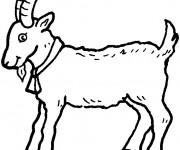 Coloriage et dessins gratuit Une petite Chèvre à imprimer