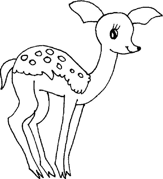 Coloriage et dessins gratuits Bébé Chevreuil souriant à imprimer