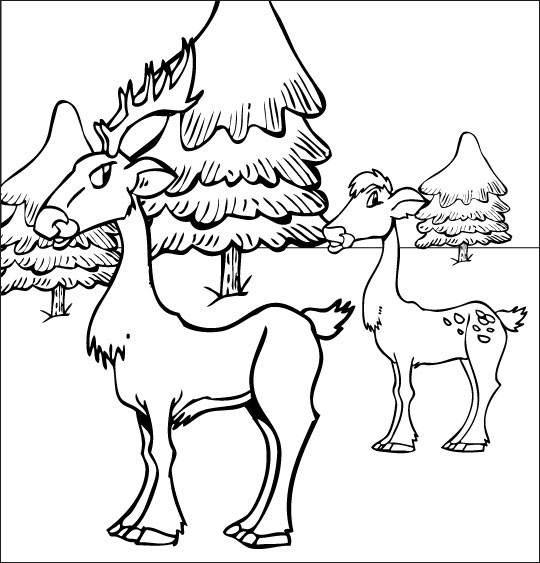 Coloriage et dessins gratuits Chevreuil et Chevrette à imprimer