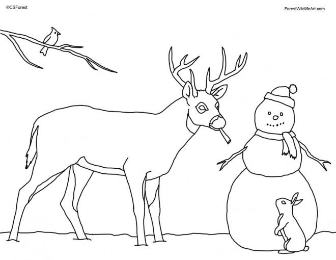 Coloriage et dessins gratuits Chevreuil et homme de neige à imprimer
