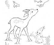 Coloriage et dessins gratuit Chevreuil et oiseaux à imprimer