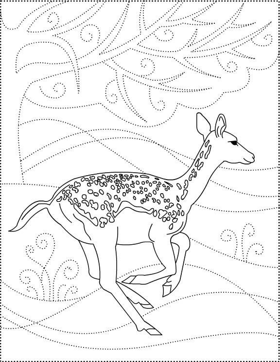 Coloriage et dessins gratuits Chevreuil se promène à compléter à imprimer