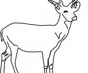Coloriage et dessins gratuit Chevreuil souriant à imprimer