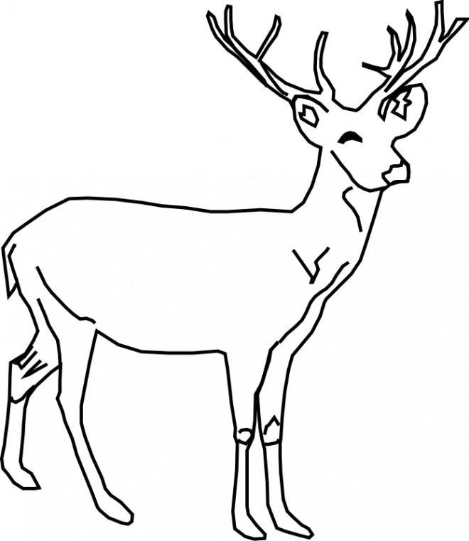 Coloriage et dessins gratuits Chevreuil souriant à imprimer