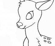 Coloriage L'image d'un petit Chevreuil