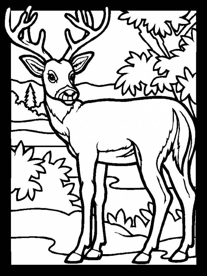 Coloriage et dessins gratuits simple Chevreuil en noir à imprimer