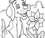 Coloriage dessin  Chien 10