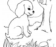 Coloriage dessin  Chien 15