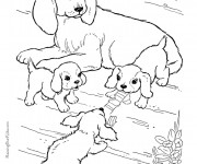 Coloriage dessin  Chien 16