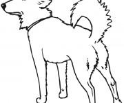 Coloriage dessin  Chien 4