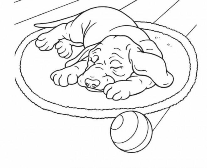 Coloriage chien en dormant dessin gratuit imprimer - Coloriage niche ...