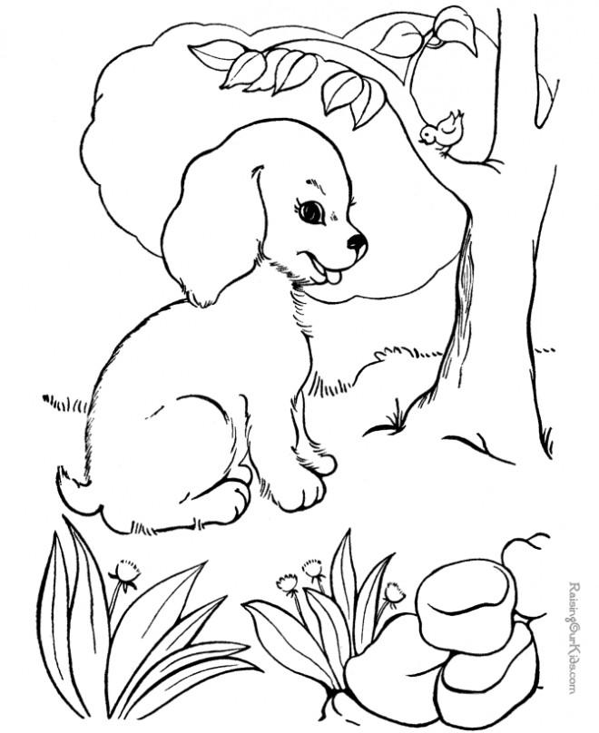 Coloriage et dessins gratuits Chien et oiseau à imprimer