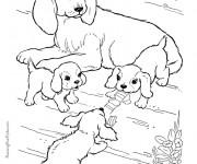 Coloriage Chien et ses petits