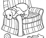 Coloriage Chien sur le fauteuil