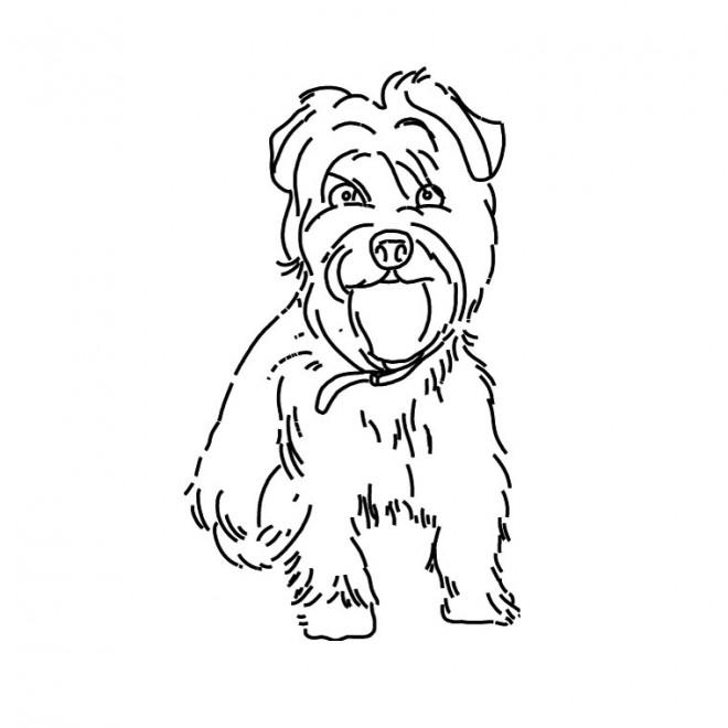 Coloriage et dessins gratuits Petit Chien domestique à imprimer