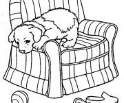Coloriage dessin  Chien 66