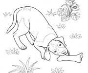 Coloriage Chien et son os au jardin