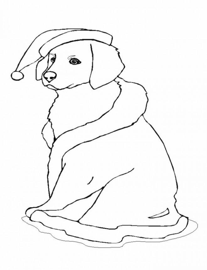 Coloriage chien noel dessin gratuit imprimer - Dessin de petit chien ...