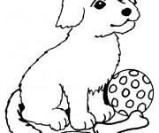 Coloriage dessin  Chiot 9