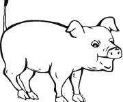 Coloriage Cochon avec la bouche ouverte