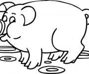 Coloriage et dessins gratuit Cochon couleur à imprimer