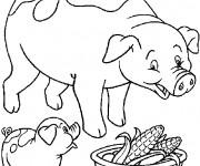 Coloriage Cochon et bébé