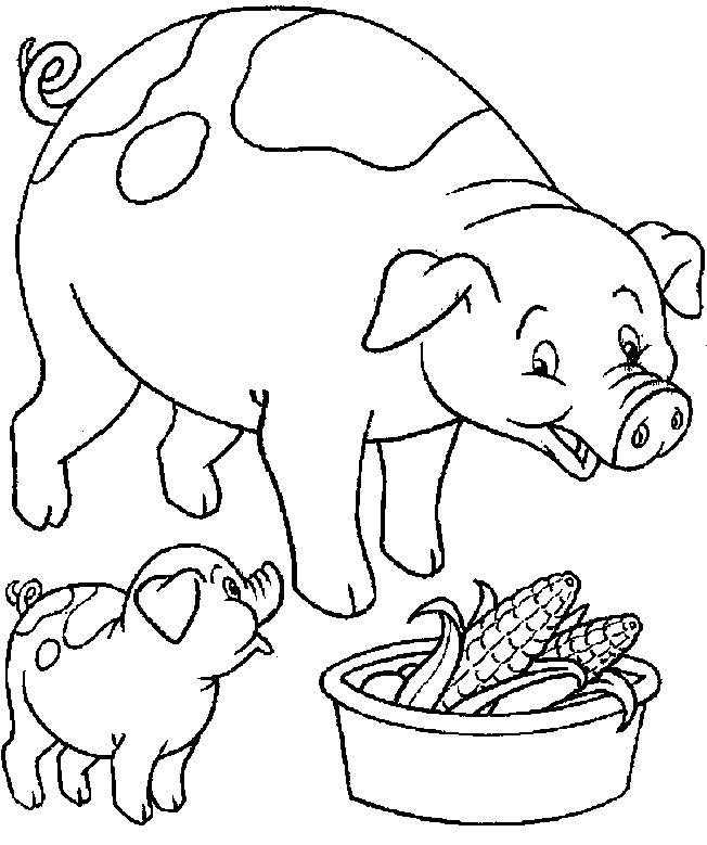 Coloriage cochon et b b dessin gratuit imprimer - Dessin cochon ...