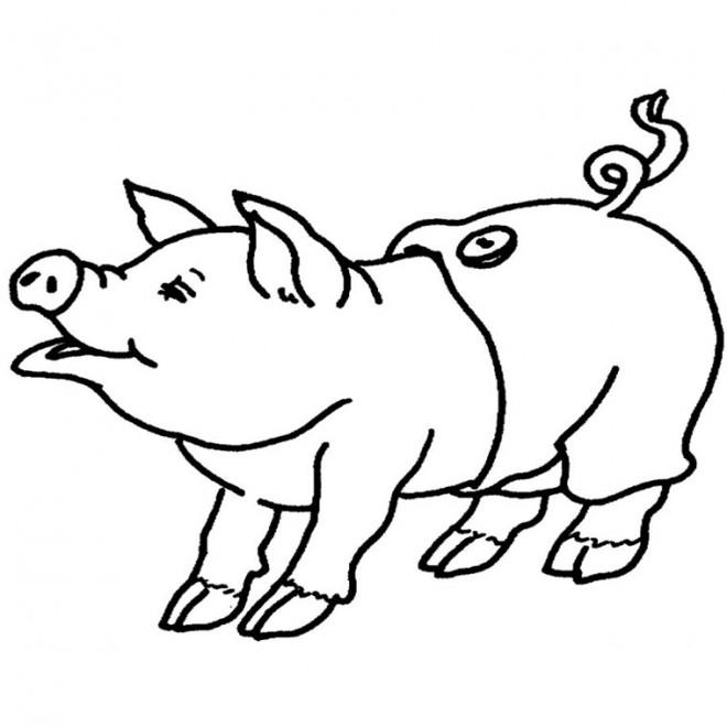Coloriage cochon portant un pantalon dessin gratuit imprimer - Dessin cochon debout ...