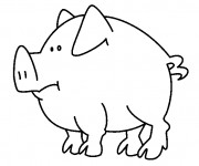 Coloriage Cochon simple