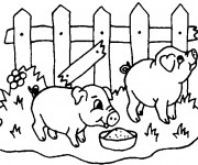 Coloriage Cochons qui mangent