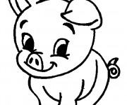 Coloriage et dessins gratuit Un Bébé Cochon à imprimer