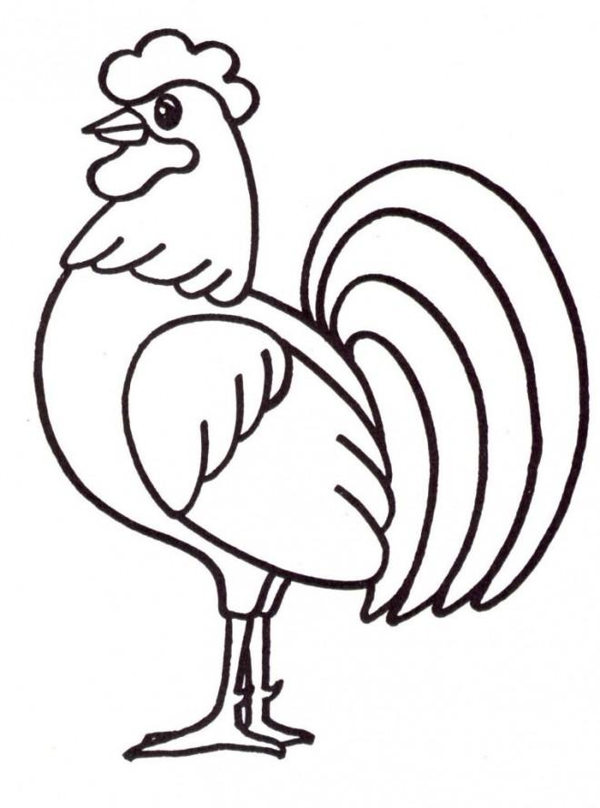 Coloriage coq 1 dessin gratuit imprimer - Coq a dessiner ...