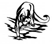 Coloriage Cougars noir est blanc