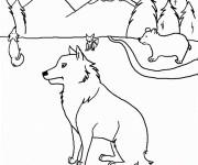 Coloriage dessin  Coyote 3