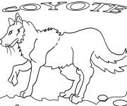 Coloriage et dessins gratuit Coyote en noir et blanc à imprimer