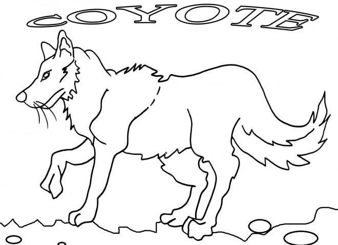 Coloriage et dessins gratuits Coyote en noir et blanc à imprimer