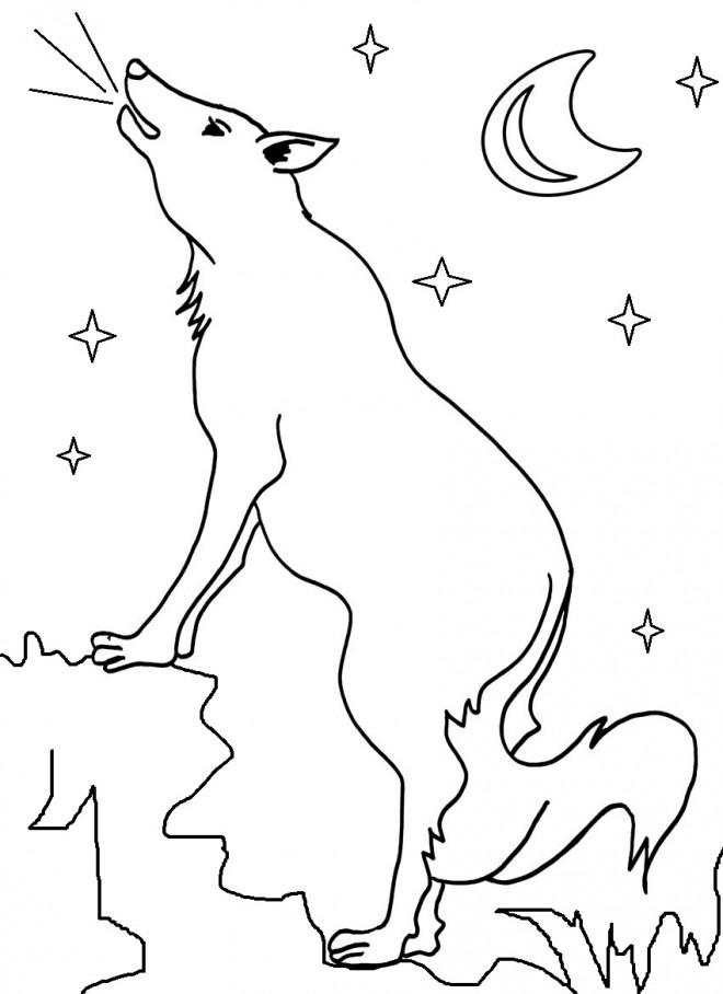 coloriage coyote sous la lune dessin gratuit imprimer. Black Bedroom Furniture Sets. Home Design Ideas